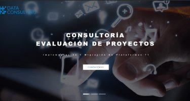 data-consulting